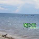 indahnya wisata pantai sire pulau lombok