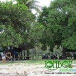 pantai sire pulau lombok