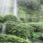 Air Terjun Memukau di Lombok, Benang Kelambu