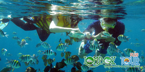 Paket Tour Suku Sasak dan 3 Pulau Gili Lombok 4 hari 3 malam