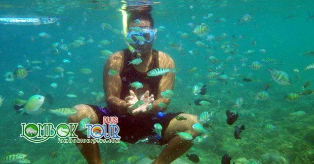 Snorkeling di Gili Sudak