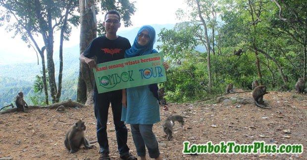 Wisata Hutan Baun Pusuk Lombok