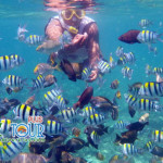 Ini Dia Alasan Mengapa Anda Harus Wisata di Lombok