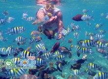 Lokasi Terbagus Untuk Snorkeling di Lombok