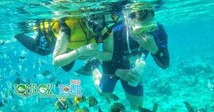 Snorkeling Menyenangkan di Lombok
