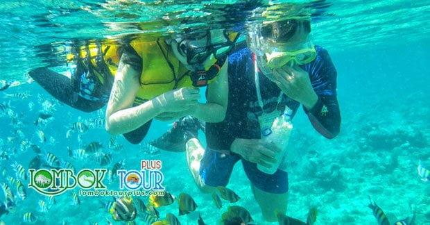 Snorkeling Menyenangkan di Gili Trawangan