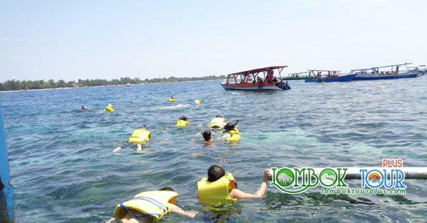 Snorkeling Menyenangkan Mengunjungi Wisata Gili Trawangan Lombok