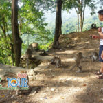 Berbagai Info Liburan Ke Lombok Terkini Yang Indah