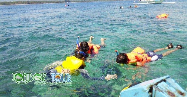 Menikmati keindahan alam bawah laut di wisata gili trawangan Lombok