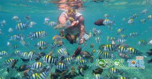 Lombok tour lebaran