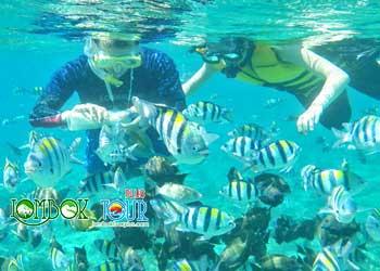 paket wisata 3 gili lombok trawangan meno air lombok tour plus