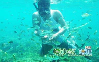 Serunya snorkeling di Gili Nanggu