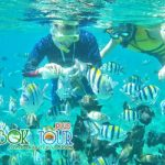 3 Tempat Wisata Populer Dalam Paket Wisata Lombok 2018